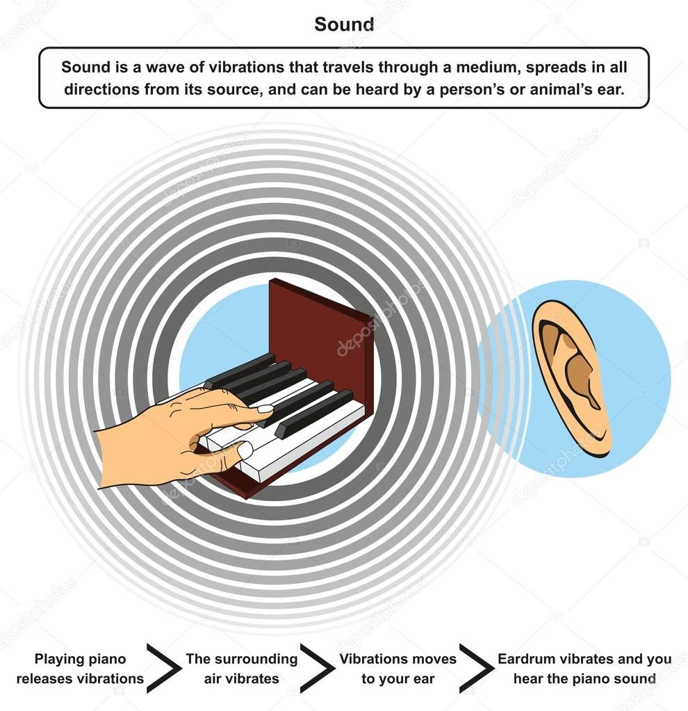 Sound Infographic Diagram Including Definition And Example Of Playing Piano Releasing Vibrations Then Surrounding Air Vibrates Moving To Ear Eardrum And Hearing Sound For Physics Science Education Premium Vector In Adobe