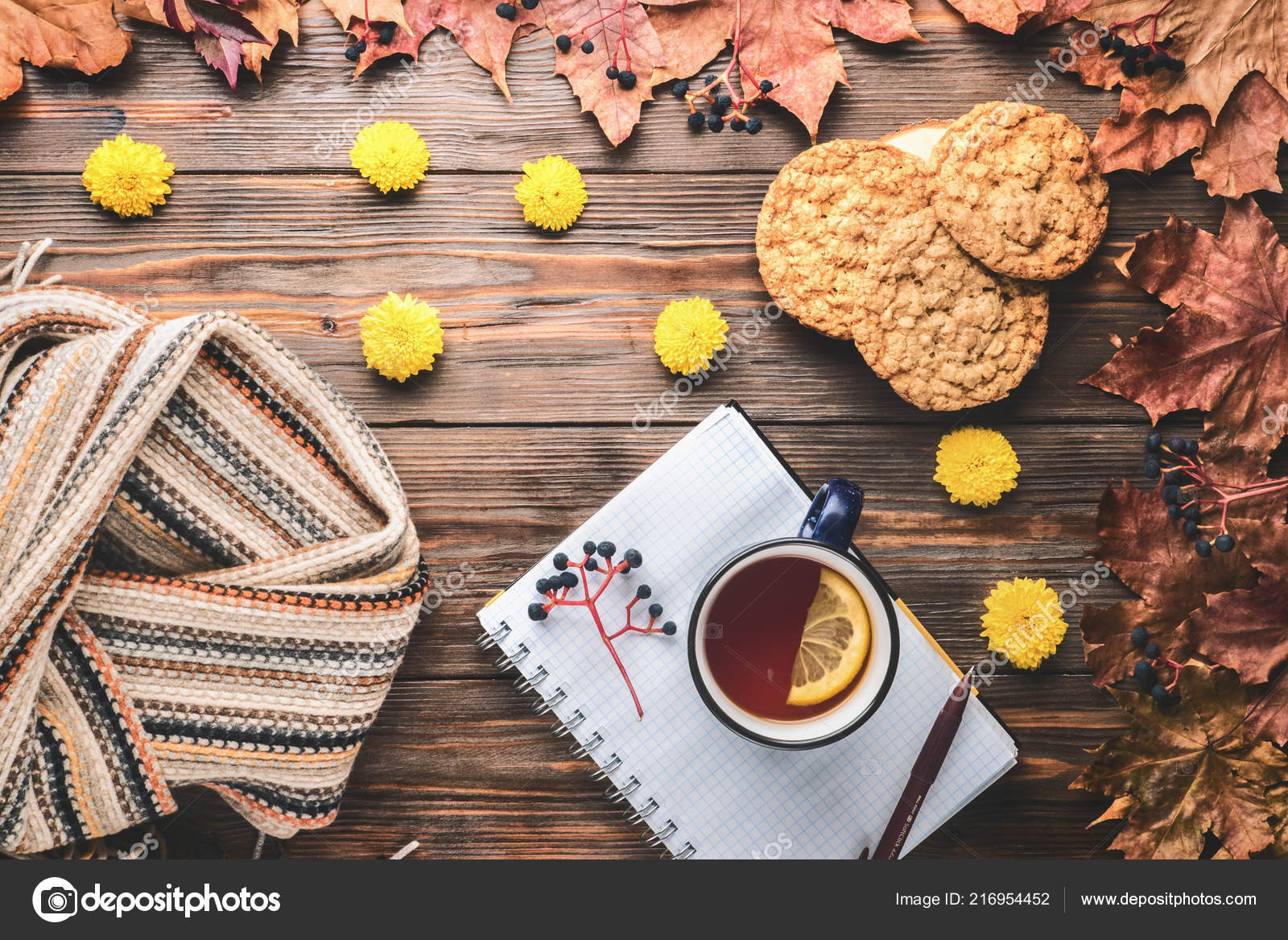 Autumn Fashion Seasonal Concept Scandinavian Knitted Scarf Cup Hot Black Stock Photo C Iskrinka74 216954452