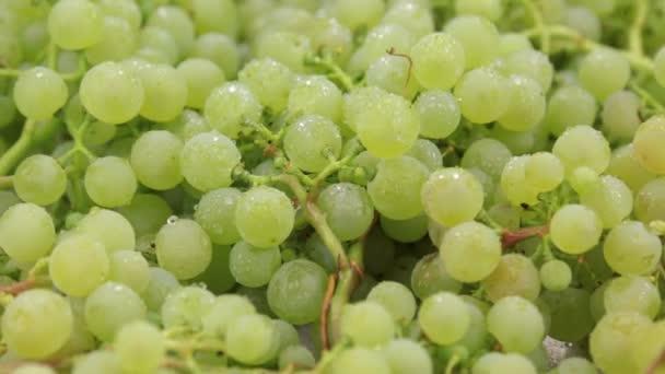 Közelről. Forgás természetes érett zöld szőlő-ben csepp harmat. Élelmiszer