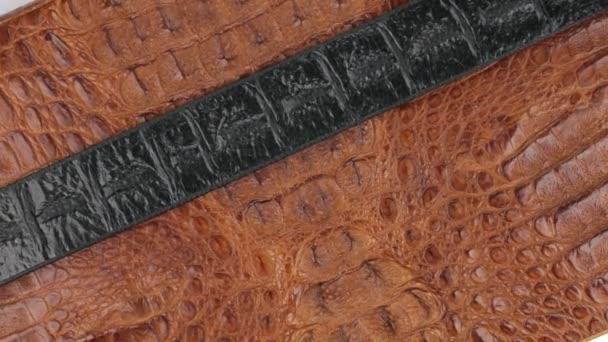 Rotace, close-up černý proužek kůže, ležící na hnědé Krokodýlí kůže.