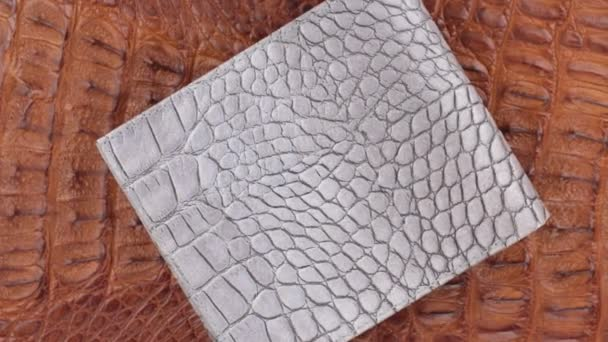 Rotation, two texture crocodile skin, gray leather purse lies on brown skin. Close-up.