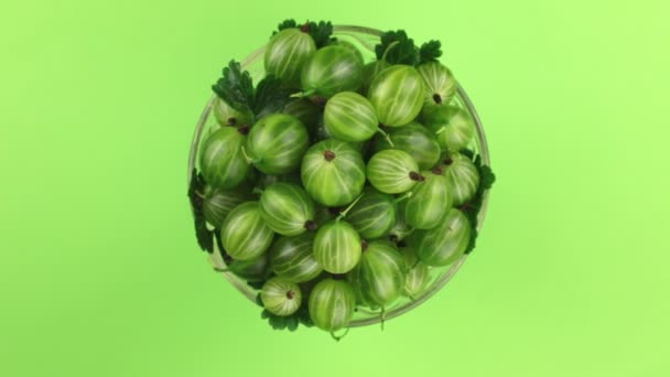 Top view, rotation of heap of ripe juicy green gooseberry. Isolated.