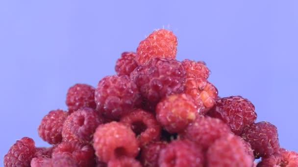 Raindrops fall on a rotating pile of ripe raspberries.