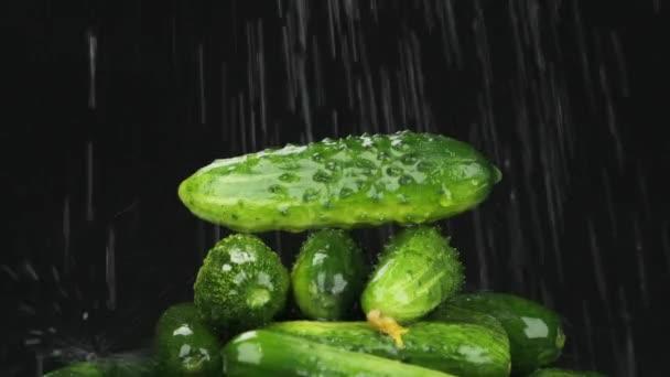 Lassú mozgás. Az esőcseppek egy halom uborkára esnek. Zöldségpiramis.
