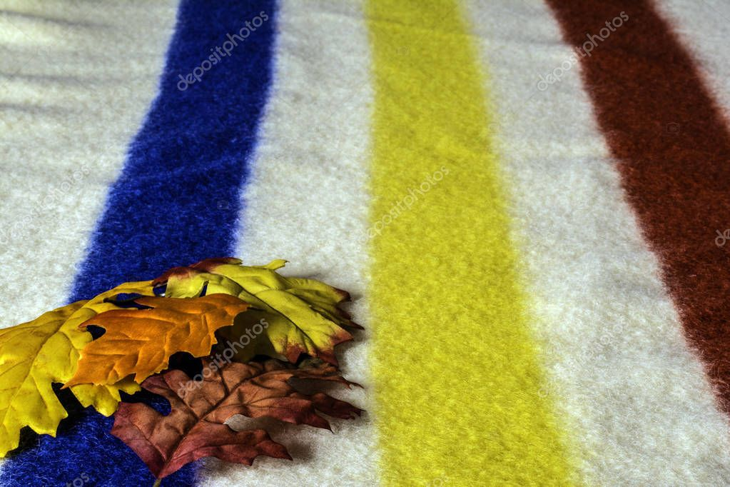 assorted autumn leaves on corner of white wool blanket with red yellow and blue stripes with room for print