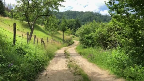 Landscape of countryside road and Serbian nature in a summer day
