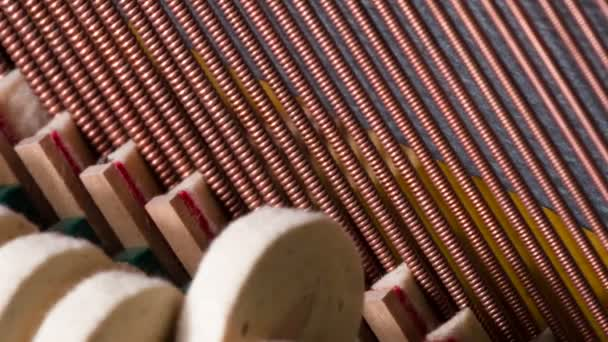 Piano hammers covered with soft felt, striking the strings inside the instrument