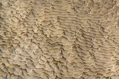 The surface of the limestone in the form of intricate patterns. The texture is made by flowing water for many years in Turkish Pamukalle. An interesting natural phenomenon.