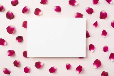 Top view of red rose petals pattern with white blank card on pink background stock vector