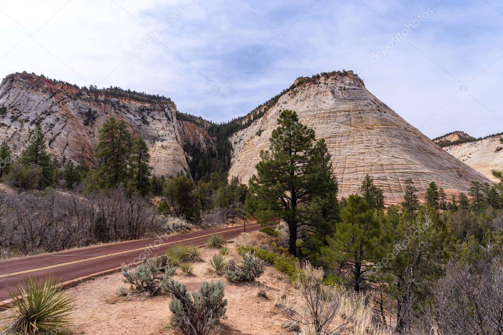 Checkerboard Mesa at Zion national park in Zion, Utah, USA