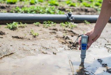 Woman mesures irrigation water with digital PH meter in water pu