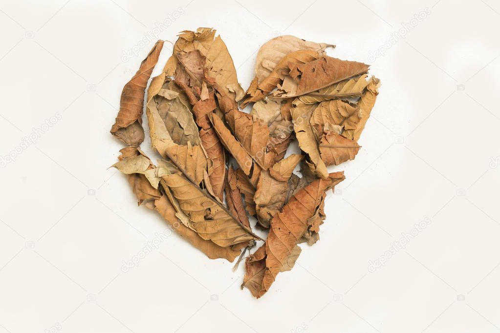 Heart Made of Yellow Brown Dry Leaves, Isolated on White Background