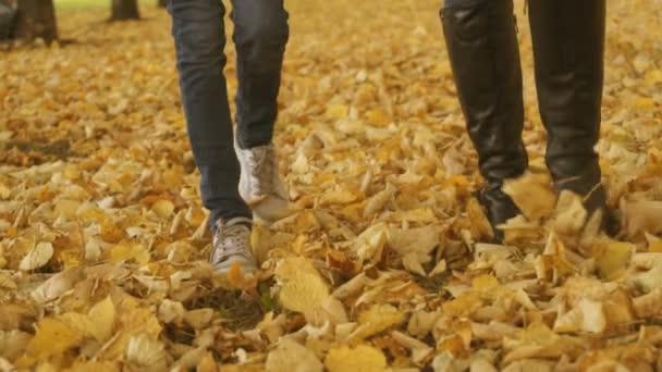 Žena a malá holčička na spadané podzimní listí.