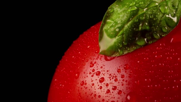 Macro view of wet tomato with basil leaves.