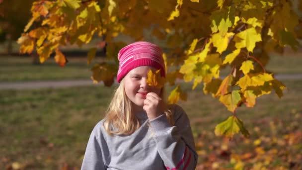 Porträt eines schönen Mädchens im Herbstpark