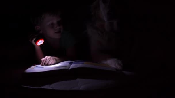 šťastný život s domácí zvířata - malý chlapec v noci čtení knihy pod přikrývkou s jejich velký pes