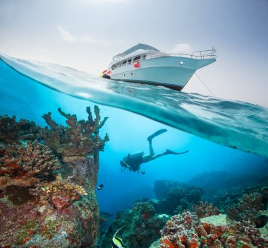 Split photography of safari yacht and woman diver exploring coral reef. Underwater fauna, flora and marine life.