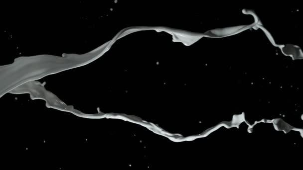 Velmi pomalý pohyb otáčení dvou mléčných dlaz na černém pozadí. Natáčeny velmi vysokorychlostní fotoaparát, 1000 fps.