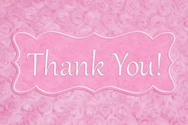 Thank You message on a pale pink rose plush fabric with a banner