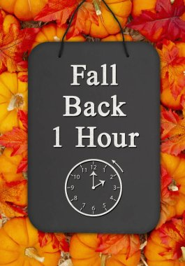 Fall Back 1 hour time change message on a chalkboard sign on pum