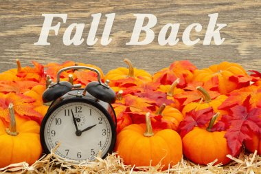 Fall Back time change message with a retro alarm clock with pump