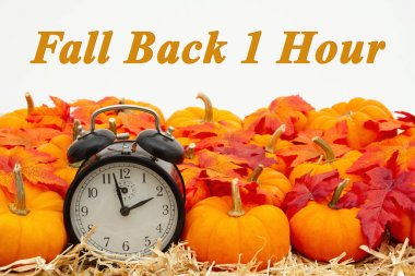 Fall Back 1 hour time change message with a retro alarm clock wi
