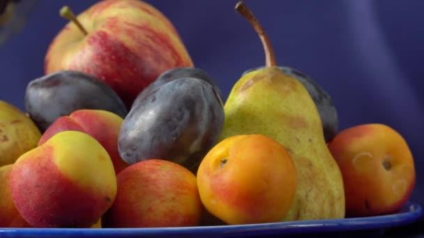 Csendélet gyümölcsökkel és egy üveg borral. Alma, körte, szilva, szőlő és nektarin.