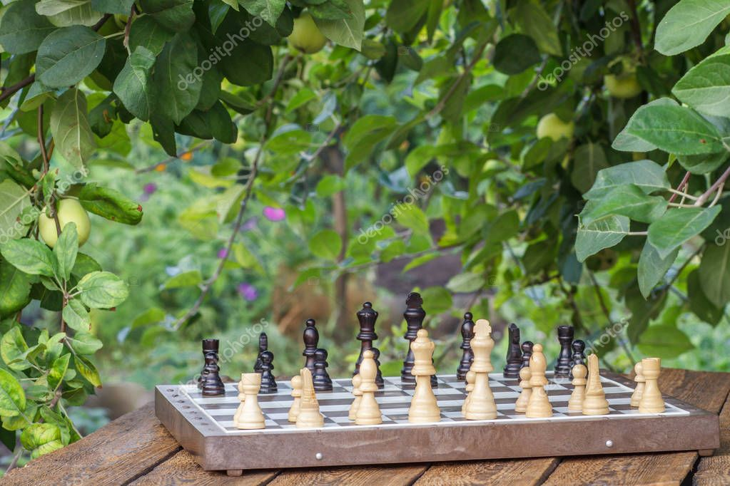 Chess board with chess pieces on wooden desk with branches of apple tree and green leaves on the background. Selective focus on white pieces