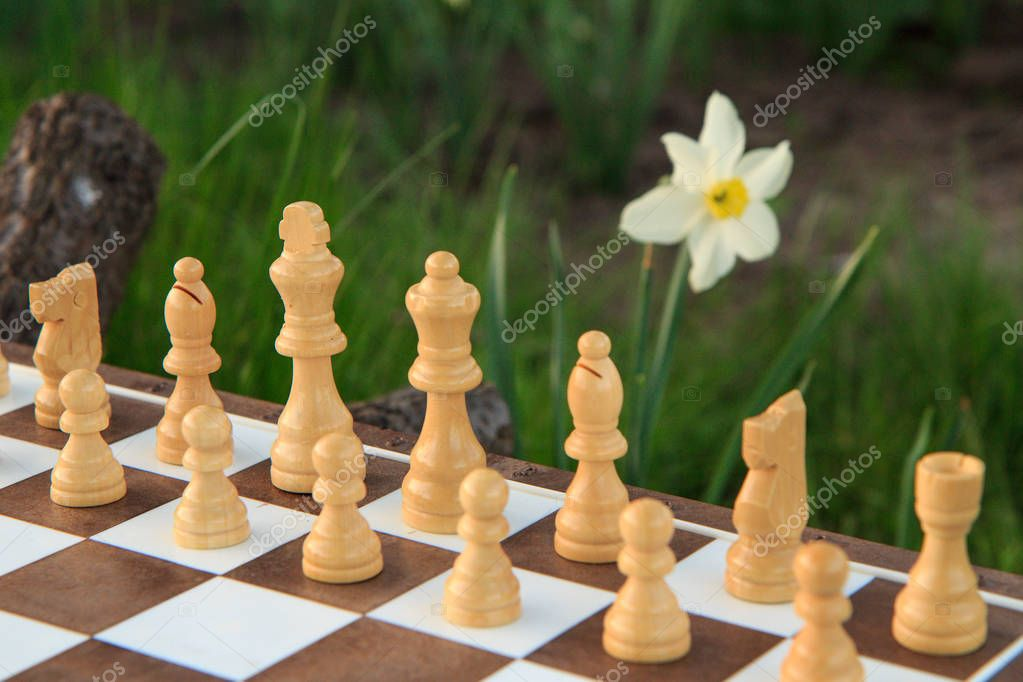 Fragment of chess board with white chess pieces in green background with daffodil flower. Selective focus on king chess piece. Outdoors chess game.