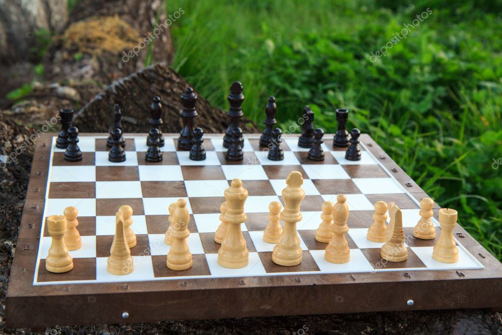 Chess board with chess pieces on tree trunk and green grass.