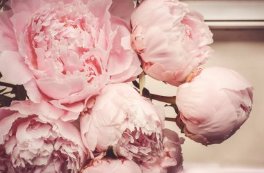 Bouquet of peonies, close up