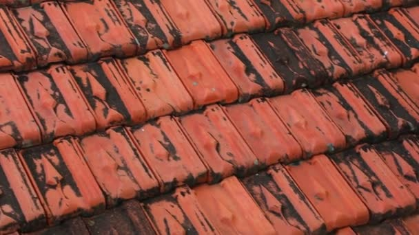 Red rooftop baked clay tiles old and weathered panning camera high  definition stock footage clip