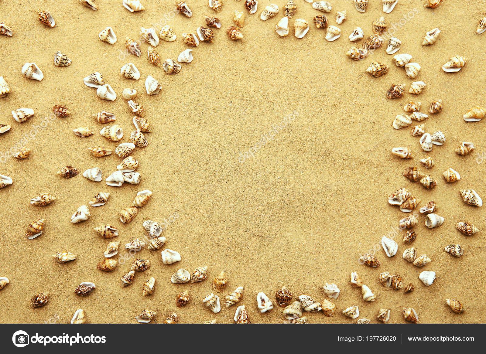 Kreis Rahmen Aus Winzigen Muscheln Strand Sand Hintergrund Mini ...