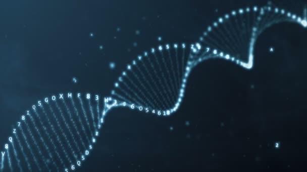 DNS rotáció hexadecimális kód