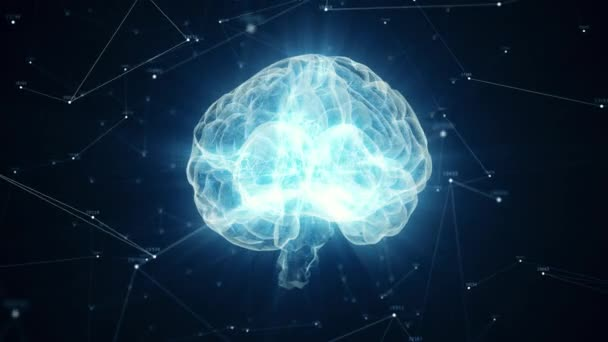 The human brain rotates formed of luminous particles. Plexus structure revolving around. Seamless loop 4k animation
