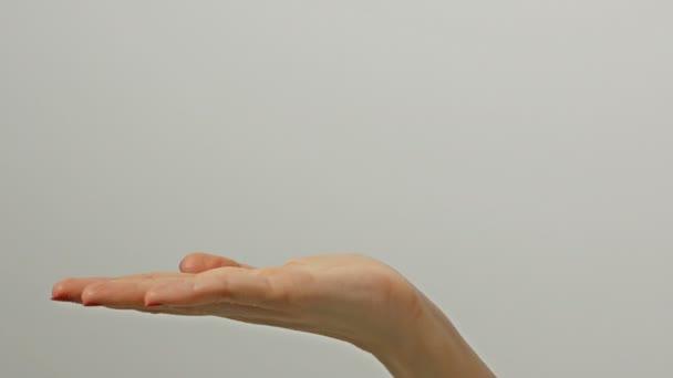 Közeli kilátás 1 nő felnőtt kinyújtott kaukázusi kéz szürke háttér gazdaság semmit. Fiatal Womans kéz gesztussal, mintha mutatja valami virtuális és láthatatlan.