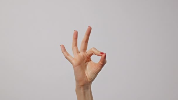 Nő kéz gesztikulál oké szimbólum. Gesztus, jel, szimbólum. Kommunikáció beszéd nélkül.