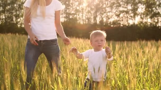 The concept of a happy family. In the rye field, the kid and his mother are fond of smiling at each other in spikelets in the backlight