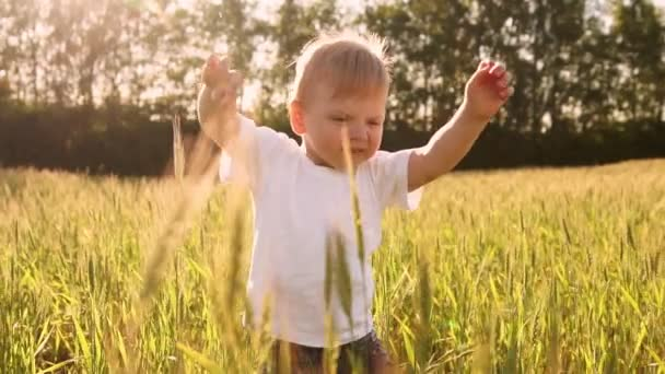Chlapec v bílé košili chůzi v poli přímo do kamery a usmívá se v oblasti špičky