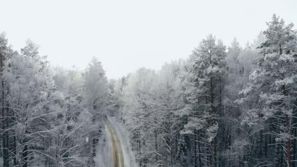Zimní sezóna zasněžený horský Les letecké zastřelil přírodních scenérií, mražené lesní a tmavé horské řeky