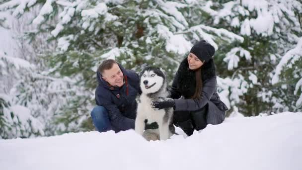 Woman and man play with dog in snow.