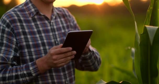 Odlesky objektivu: zemědělci používající digitální tabletový počítač v kultivované oblasti sójových plodin, moderní technologie v zemědělské činnosti.