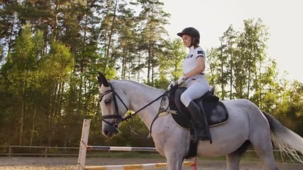 die besten Reitermomente mit einem Lieblingspferd