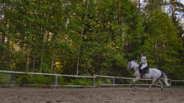 Galopp-Reitstil von professionellen Reiterinnen
