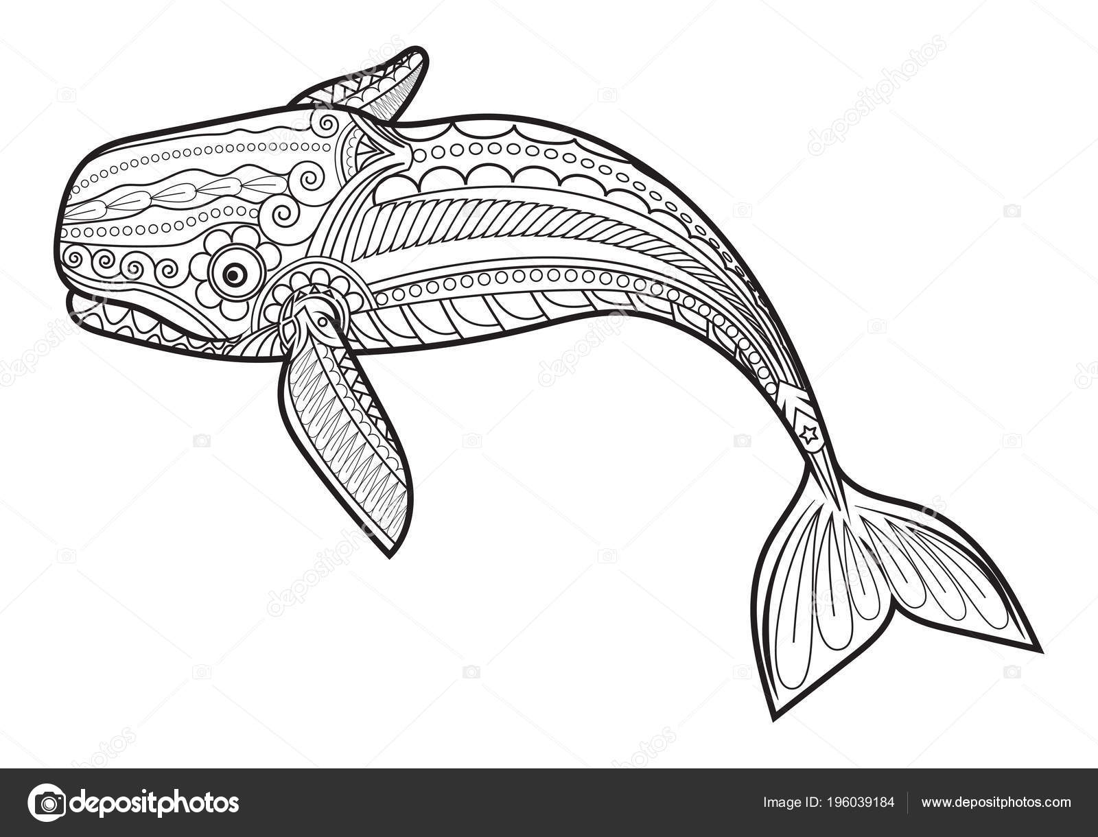 Vector Whale Adult Stress Coloring Pages Ornamental Tribal