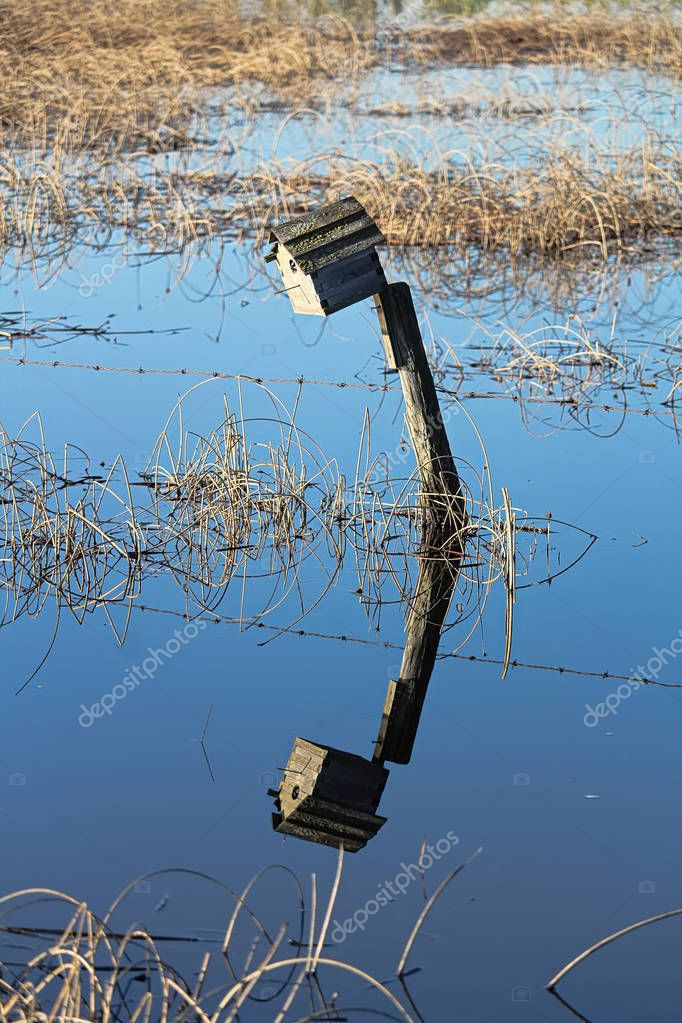 A birdhouse on a fence with its reflection in water