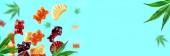 Barevné gumky létají spolu s konopím listí. Žvýkací bonbony s CBD olejem THC