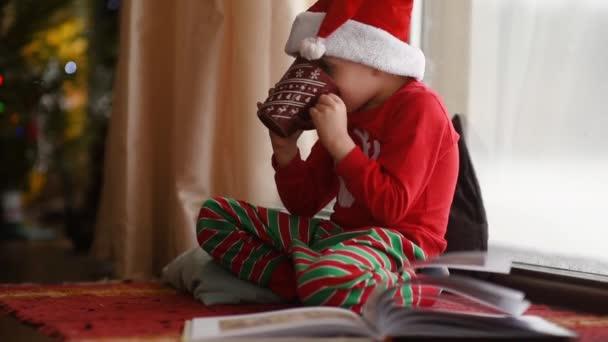 Kleiner Junge liest ein Buch und trinkt heißen Kakao im gemütlich dekorierten Wohnzimmer. glückliches Kind in der Weihnachtszeit. Aktivität für Kinder im Winterurlaub