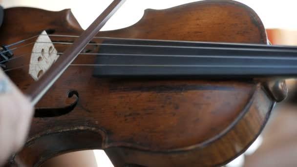 Lány játszik a hegedű a lakodalomban
