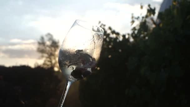 Slow-Motion-Video von einem Glas Champagner mit Beeren